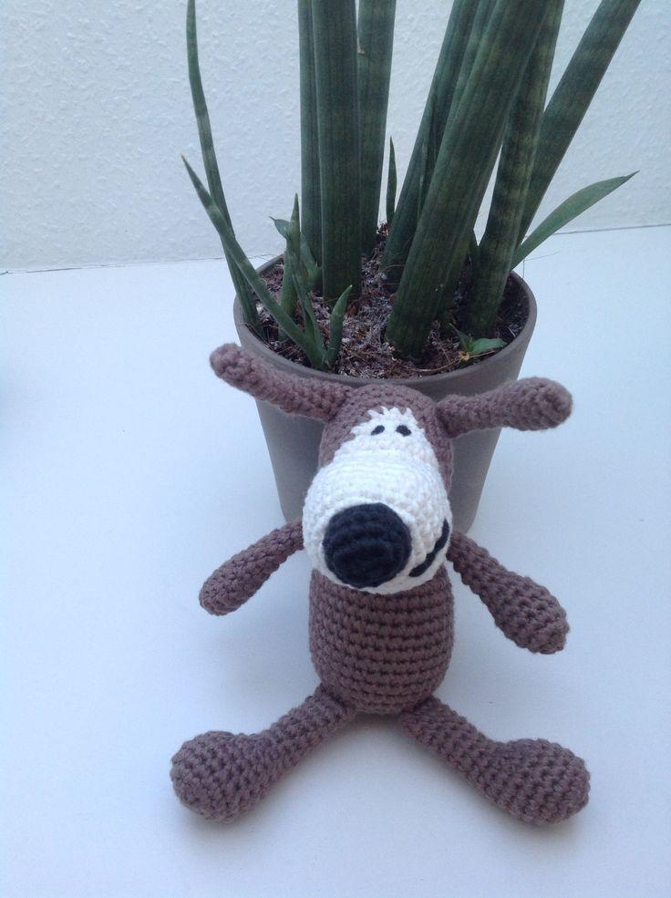 Buffi the dog (Rosas)
