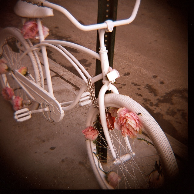hermosa bicicleta: Pink Flower, Vintage Love Photography, Beautiful Bicycles, Vintage Wardrobe, Inspiration Pictures, Vintage Bicycles, Crosses Stitches, White Bike, Bicycle