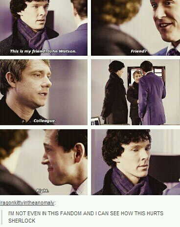"""""""I suppose this happened very early on in their relationship, before John knew Sherlock well enough to understand how much this would hurt his feelings, but I still get a little mad at him every time I watch this scene."""""""