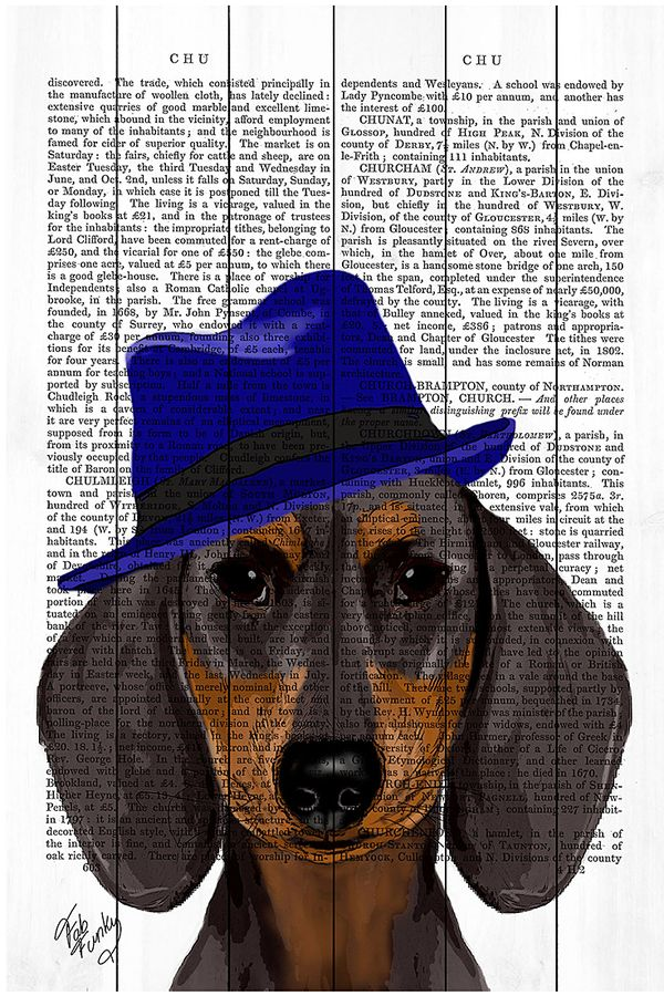 World Art Group Dachshund With Blue Trilby Wood Wall Art