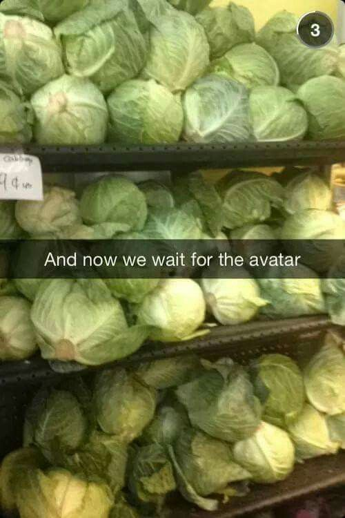 MY CABBAGES (he's the Stan Lee of Avatar) <--- Oh my gosh