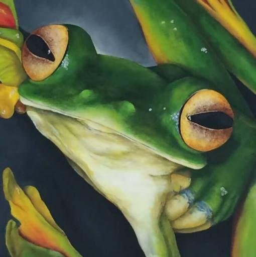 Malabar gliding frog (Kikker) | detail van schilderij | Ambacht en Design