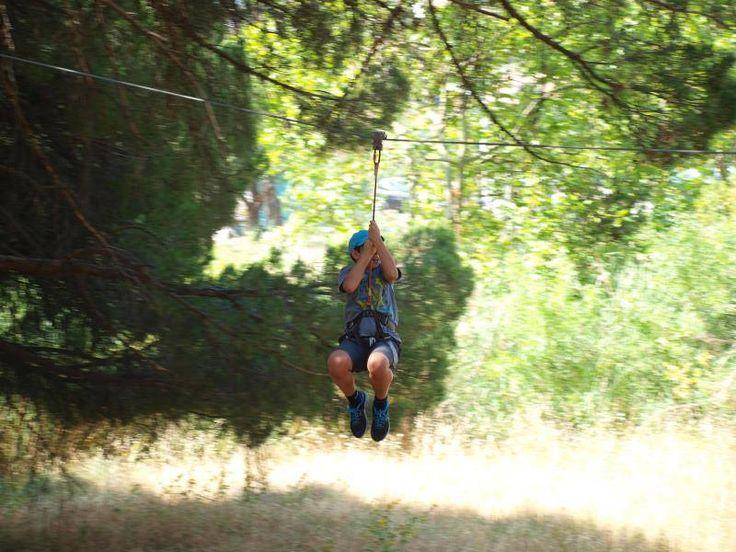 Atividade de arborismo, para os alunos do 2.º CEB, na Mata da Paiã, no dia 28 de junho...