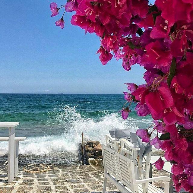 Naousa, Paros Island by @sokolatakis      #paros #greece
