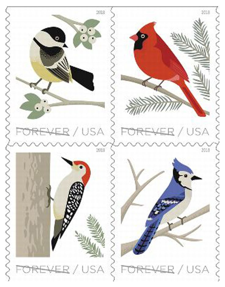 Birds In Winter Book Of 20 Forever Postage Stamps Scott 5320 Etsy In 2021 Forever Stamps Postage Stamp Design Usps Stamps
