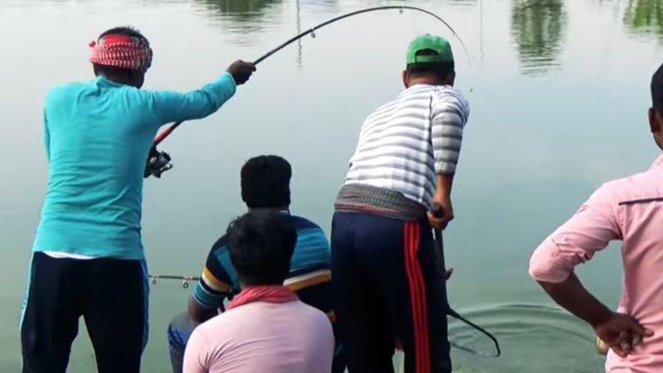 Big Common Carp Fish Hunting And Fishing Videos By Fish Watching