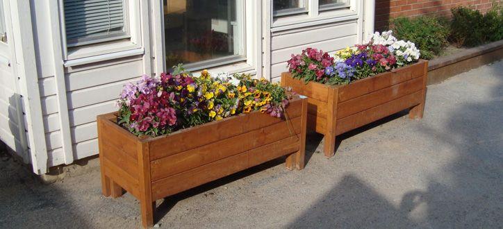 Som altid ønsker jeg mig, at min blomsterkasse på terrassen bliver ...