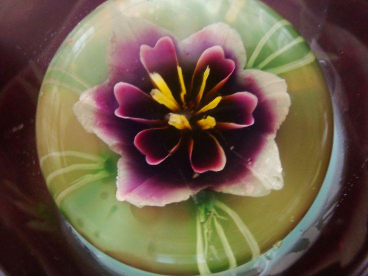 gelamami gelatina flor morada