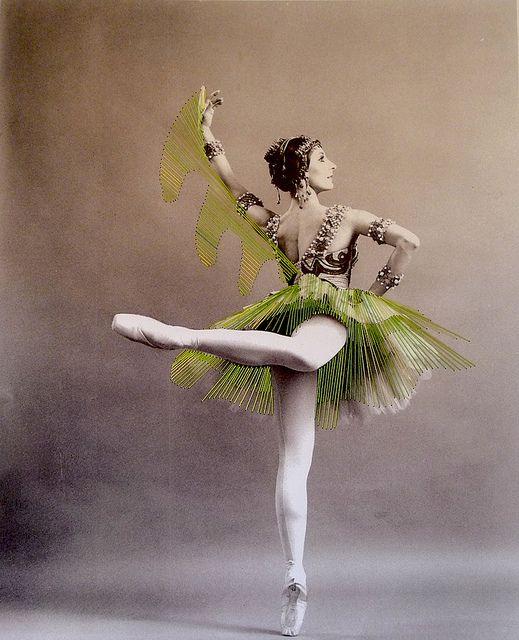 Jose Ignacio Romussi Murphy, Dance 8