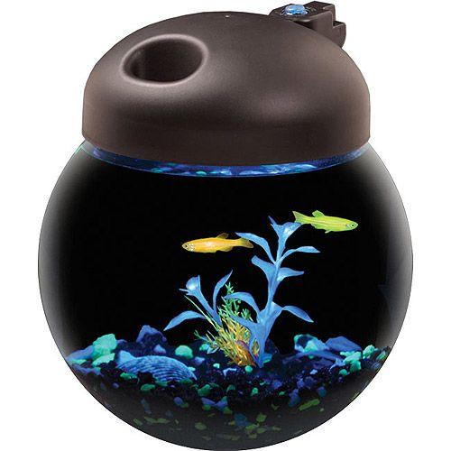 Aqua culture betta fish globe bowl aquarium with mutli for Fish tank hoods