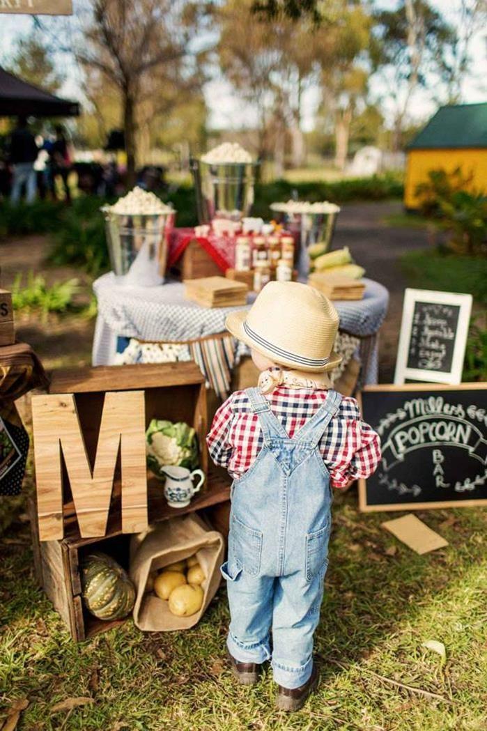 Farm Birthday Party Planning Ideas Supplies Ideas Cake Barnyard