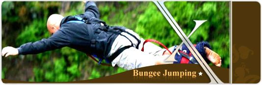 bungee jump, i'm sure it will scare the hell out of me but I really want to!