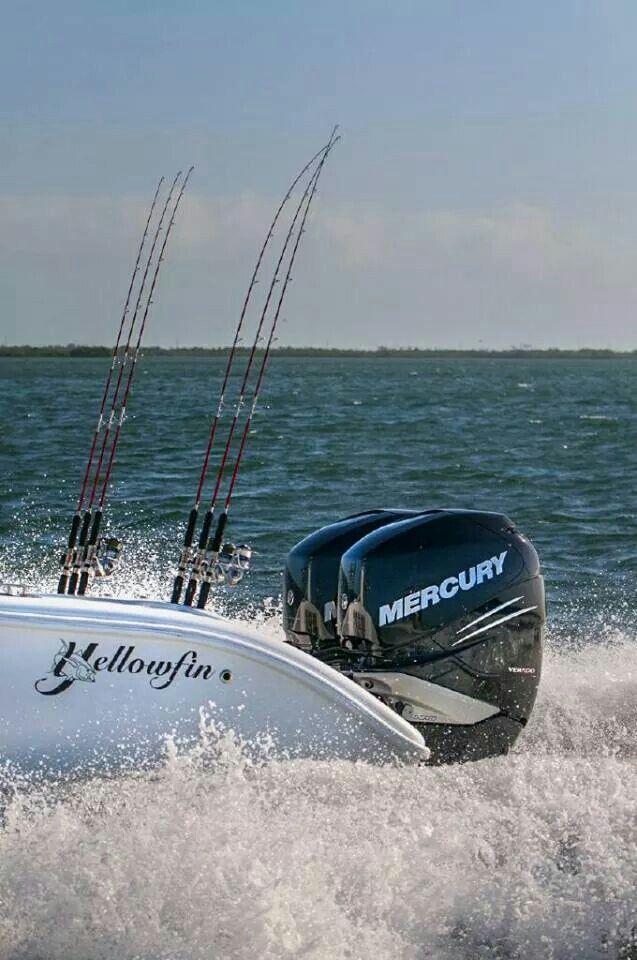 Saltwater fishing florida keys boating seatech marine for Saltwater fishing in florida