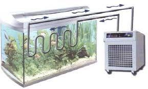 AQUARIUM SUPPLIES, ACCESSORIES AND EQUIPMENT: How to Buy the Right Aquarium Chiller