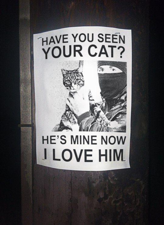 Cat Burglar X'D