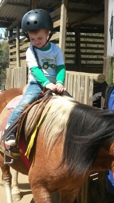 Birthday boy horse riding