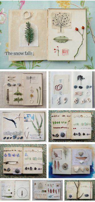 An Unwritten Book by Fiona Watson (wildgoosechase) nature, journal, scrapbook, art, shells, leaves, flowers,