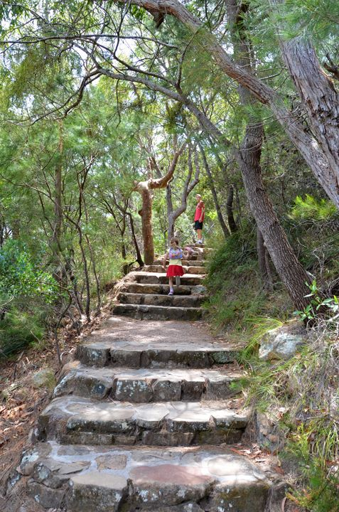 There are some magical pathways on the hike up to the summit of Tomaree Head. Port Stephens #tomareehead #portstephens