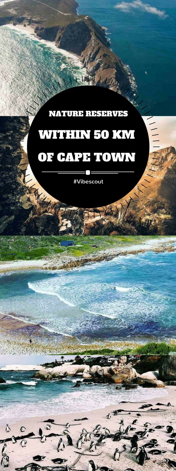 The best part about living or visiting nature reserves in or around Cape Town is how close the attractions are to the Mother City.