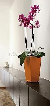 Artificial plant orchid pot 18 cm cubic Lechuza Mini shiny, orange