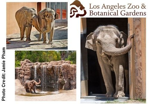 Natural History Museum Los Angeles Promo Code