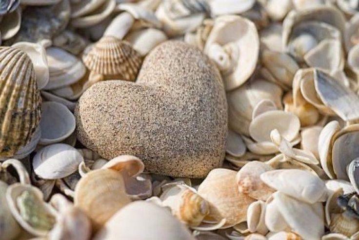 Granite Heart amongst the Shells ....