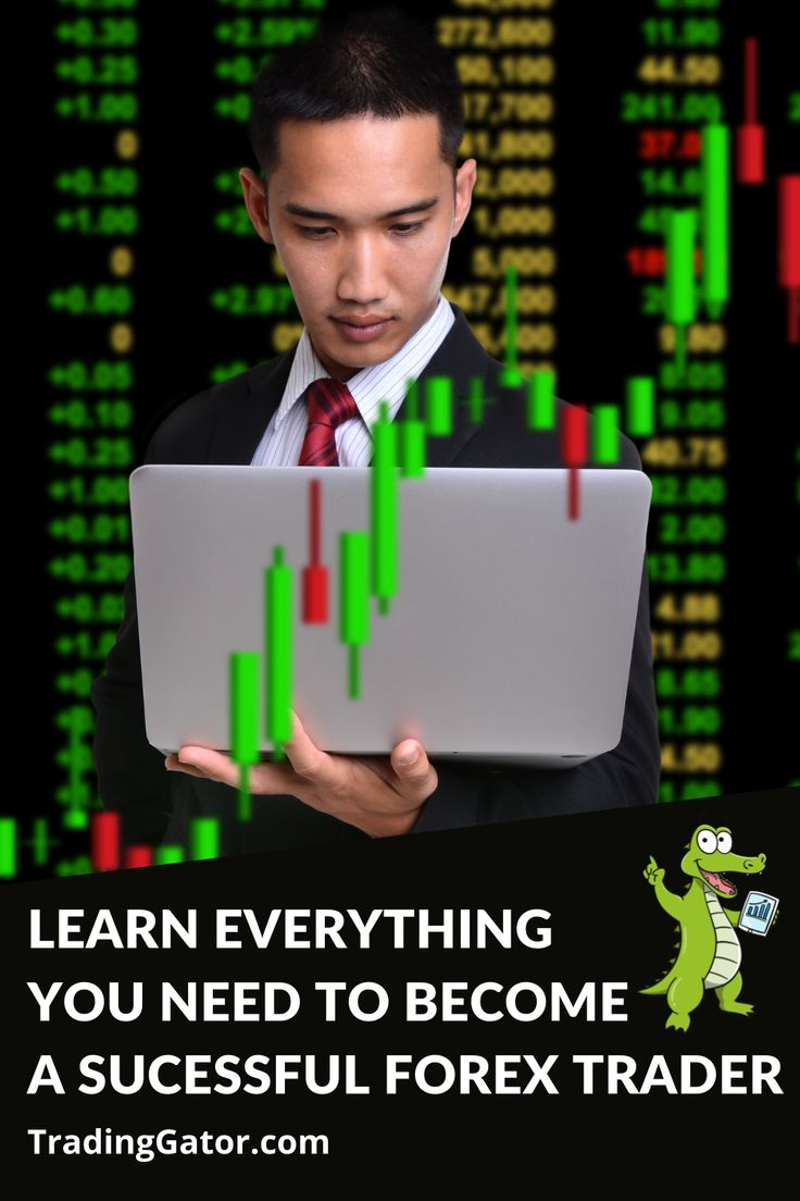 learn to trade forex like a winner! step by step forex trading guide For Beginners #forex #forextrading #forextrader #trader #trading #success