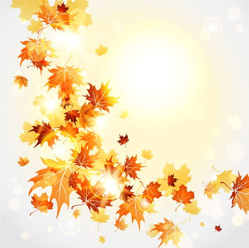 Bright autumn leaves vector backgrounds 08