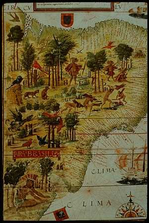 """""""Sixty-four days out of Lisbon,"""" the fidalgo said, """"forty days west of Cabo Verde, and still no Terra de Santa Cruz..."""" Cavalcanti was thinking of Gomes de Pina's use of the old name — Land of the Holy Cross — given to the territory by Pedro Álvares Cabral when he discovered it for Portugal in 1500. On the Lisbon waterfront, it was Terra do Papagaio (Land of Parrots) or Terra do Brasil, named for the brazilwood taken from its wild shores. -- from Brazil, a Novel by Errol Lincoln Uys"""