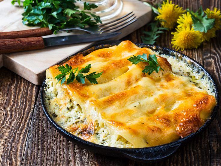 Gefüllte Cannelloni: Vegetarisch gut