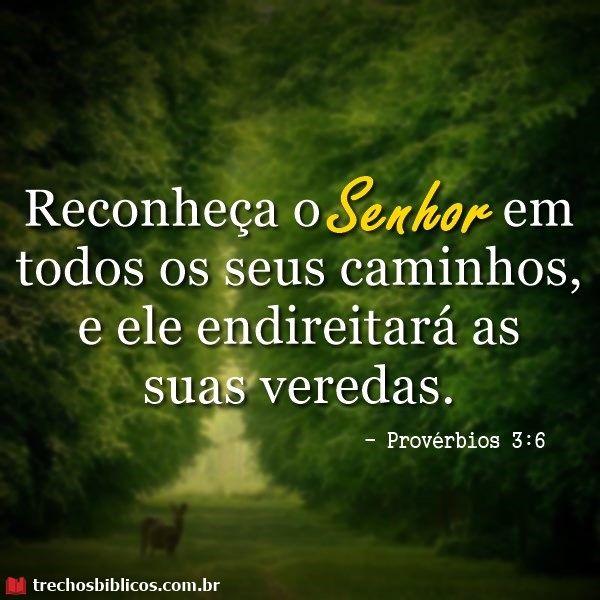 Provérbios 3:6
