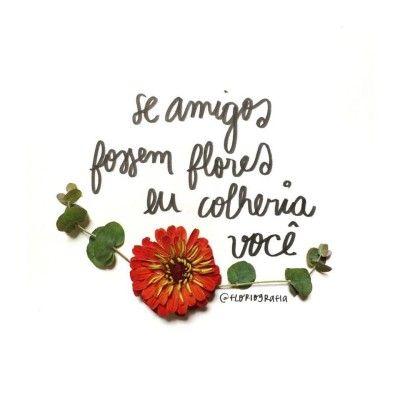 <p></p><p>Se amigos fossem flores, eu colheria você. </p>