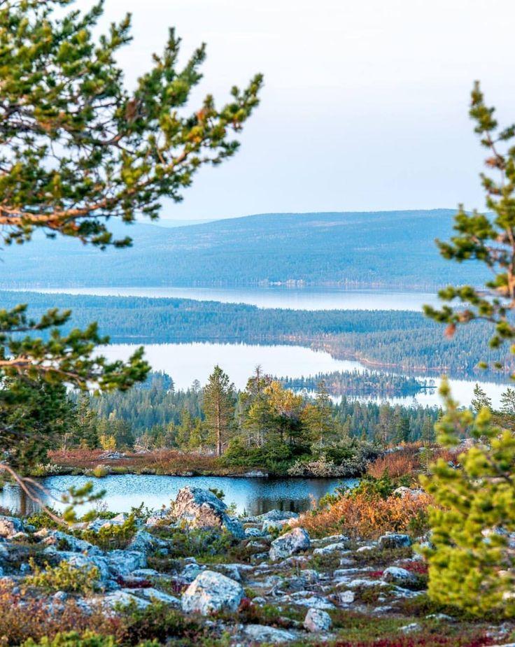 Autumn colours by @markuskiili from Ylläs.