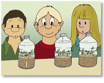 CE : Jardinage en bouteille plastique