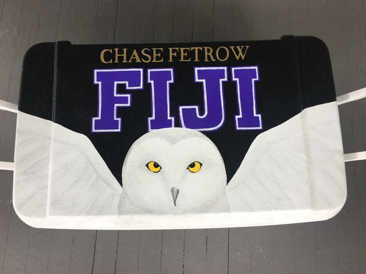 Fiji owl painted fraternity Cooler