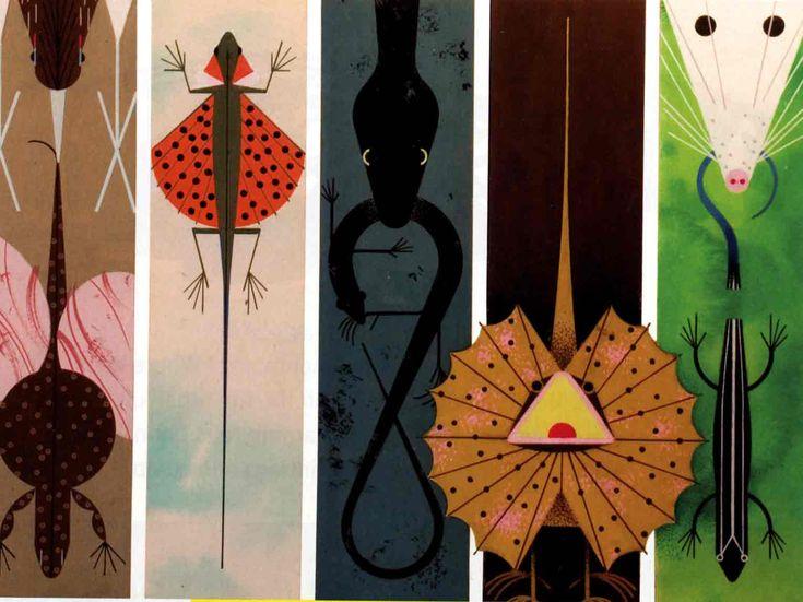 charley harper: Charley Harper, Graphic, Harper Art, Illustration, Charles Harper, Artist, Charlie Harper, Animal
