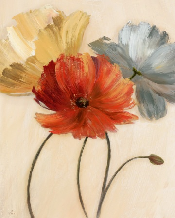 Poppy Palette I    by Nan