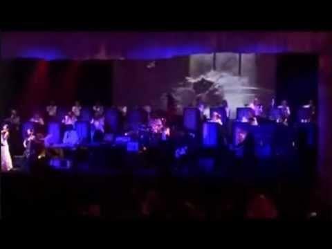 Hans Zimmer - Inception OST Concert Premiere (Live)
