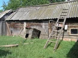 Znalezione obrazy dla zapytania хозяйственные постройки