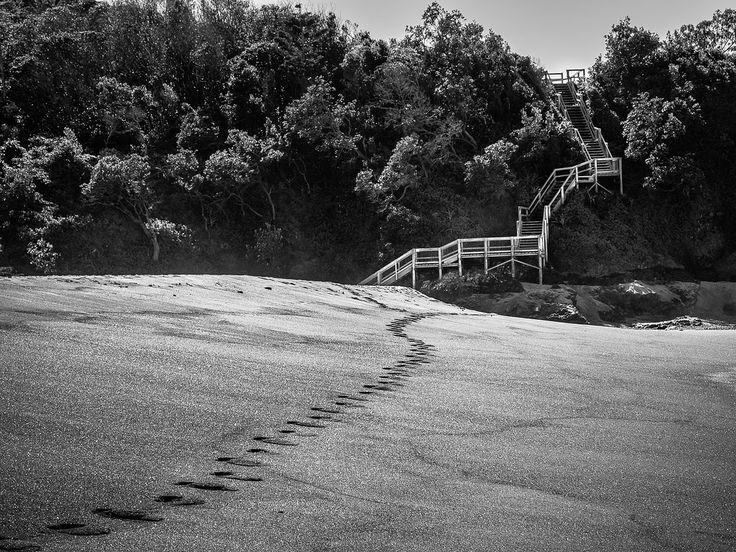 Hills Beach - Solitary Islands Coastal Walk, Coffs Harbour, NSW