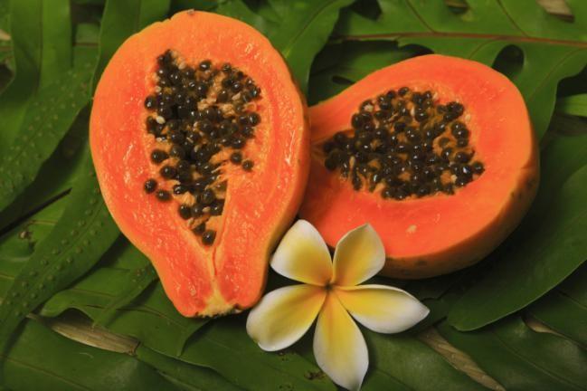 Aprovecha las propiedades de la papaya y sus hojas en beneficio de tu salud - Saludable.Guru