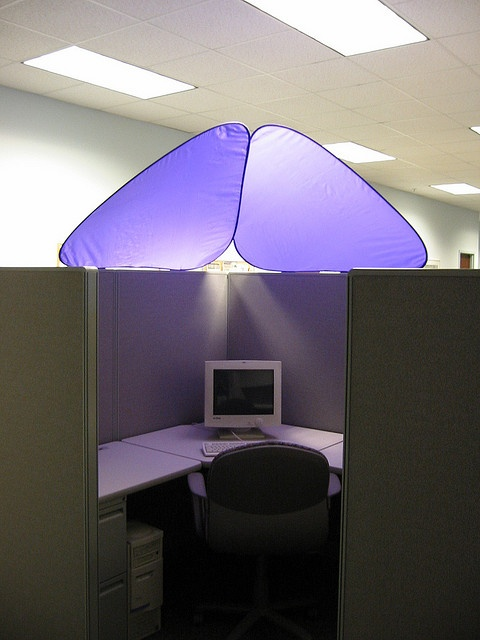 30 Best Images About Cubicle Corner On Pinterest The
