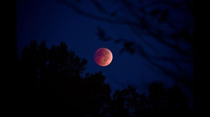 "Fotos de la última ""Luna de sangre"" - http://dominiomundial.com/fotos-de-la-ultima-luna-de-sangre/?utm_source=PN&utm_medium=Pinterest+dominiomundial&utm_campaign=SNAP%2BFotos+de+la+%C3%BAltima+%22Luna+de+sangre%22"
