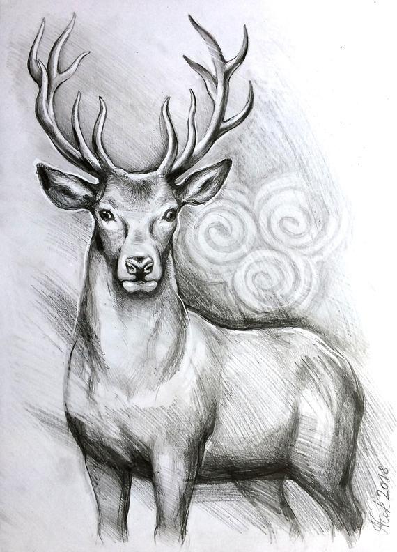 Original Deer Art Stag Pencil Drawing Graphite Home Decor