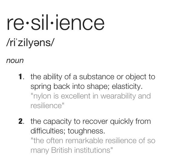 Resilience Quotes 17 Best Resilience Images On Pinterest  Quote Famous Quotes And Words