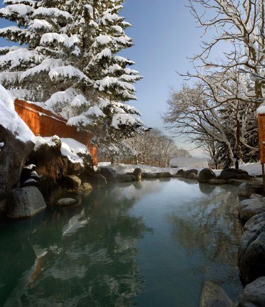 The Green Leaf Onsen, Niseko Village, Japan