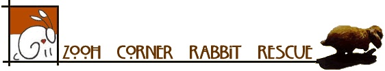 Zooh Corner Rabbit Rescue, San Gabriel, California