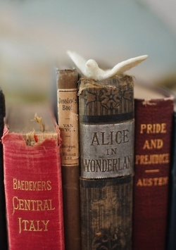Old Books: Pride & Prejudice, Alice in Wonderland, etc