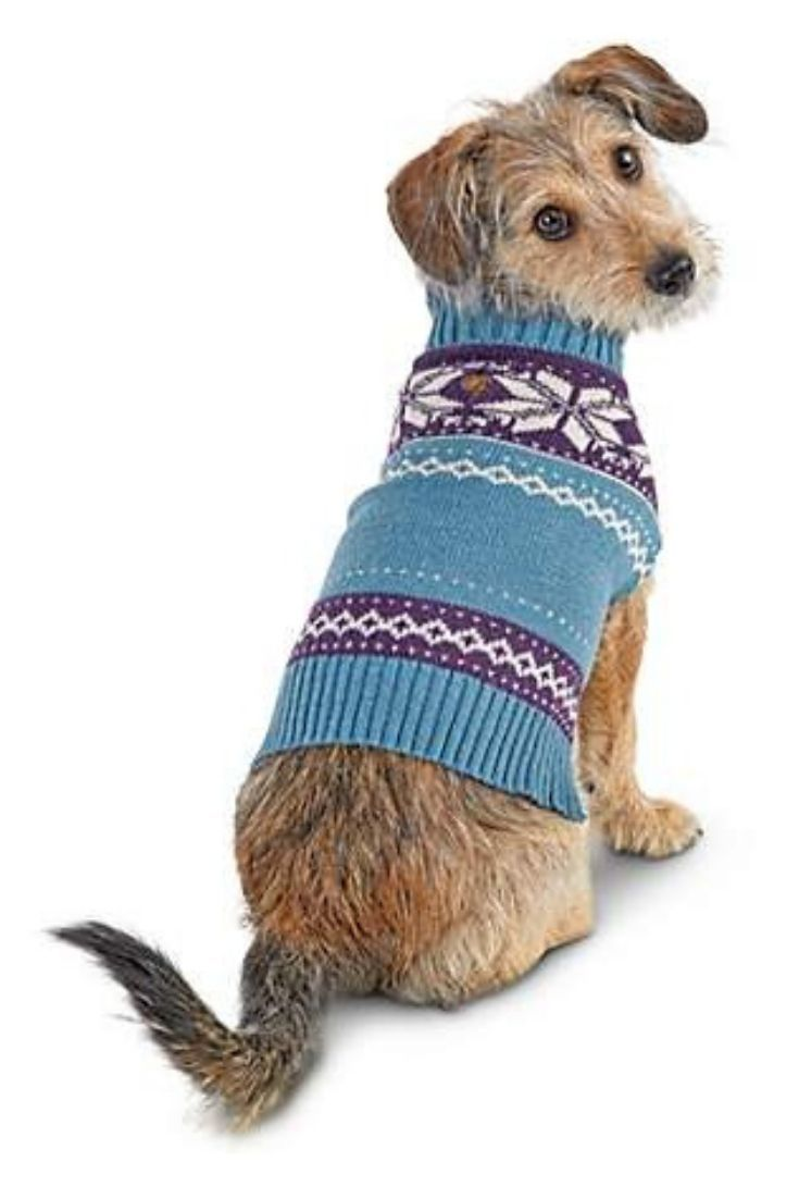 The Bond Co Blue Nordic Fair Isle Dog Sweater Will Bring A
