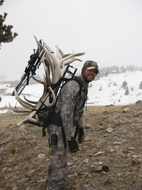 Shed Hunting Elk101 Com Dedicated To Elk Hunting